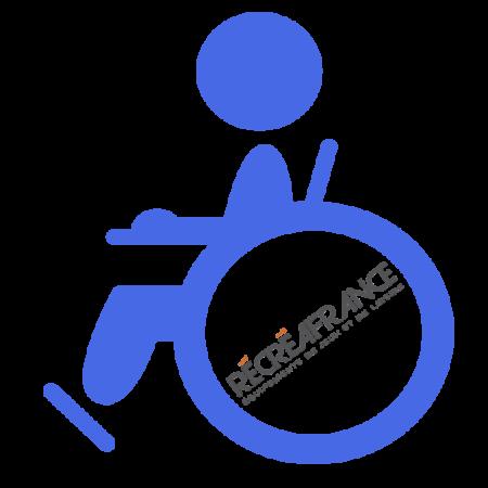 jeux adaptés handicap